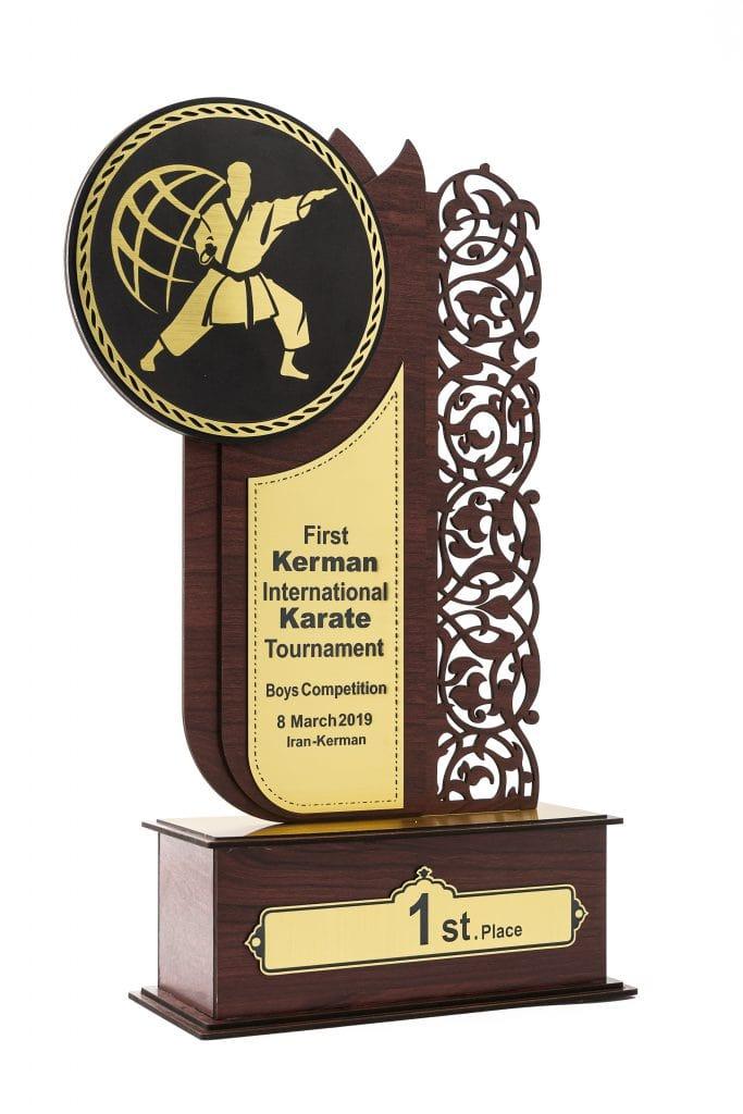 دریافت تندیس: حامی ورزش کاراته